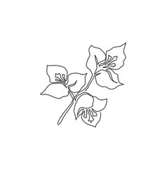 one single line drawing beauty fresh vector image