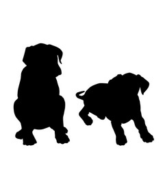 two puppy sitting silhouettes vector image
