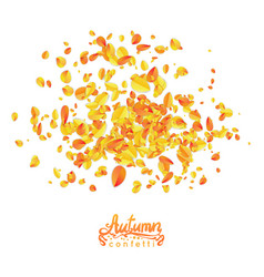 autumn leaves particles vector image