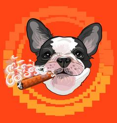 Cute dog head with a Cuban cigar vector image