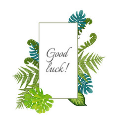 good luck poster decorated by exotic fern leaves vector image