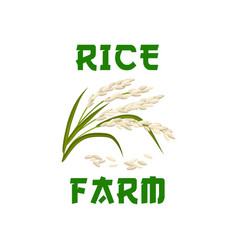 Rice plant poster or emblem vector
