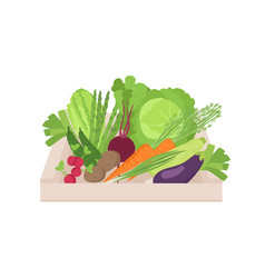 ripe organic vegetables in wooden box isolated on vector image