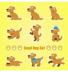 Set of playful dogs on a yellow background vector