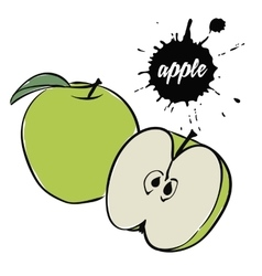 green apple fruit vector image vector image