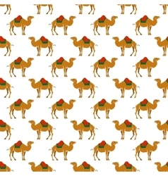Seamless pattern with camel vector image