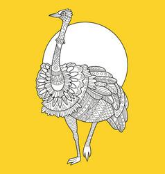 ostrich bird fashion vector image