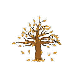 dead leafless tree hand drawn design template vector image