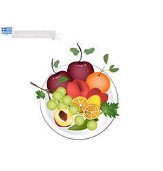 Olive apple assyrtiko grapes orange and peaches vector