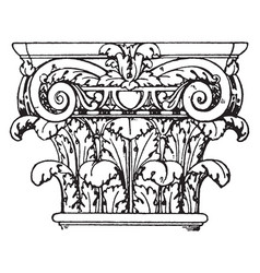 roman composite capital a fusion of the ionic vector image