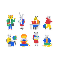 school animals cartoon characters with books vector image