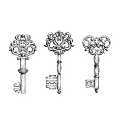 Vintage ornate skeleton keys in sketch style vector image