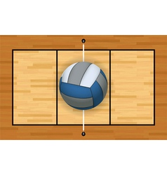 Volleyball on a volleyball court vector