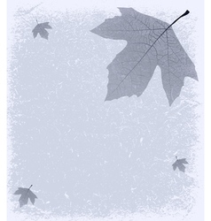 Grunge Frosty Background vector image