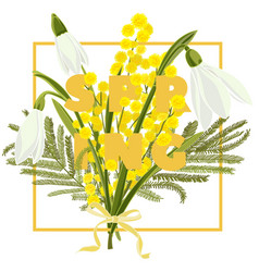 spring floral background with beautiful snowdrop vector image