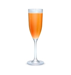 Glass of orange cocktail vector image vector image