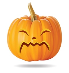 cry pumpkin vector image
