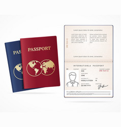 realistic detailed 3d international passport blank vector image