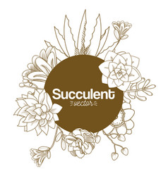 Succulent desert plants vector