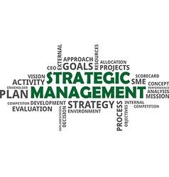 Word cloud strategic management vector