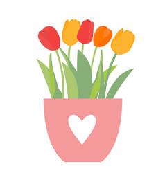 bouquet spring flowers in flowerpot tulips vector image