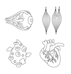 Design anatomy and organ symbol vector