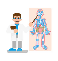 doctor show on x-ray photo vector image