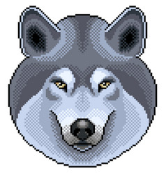 pixel grey wolf portrait detailed isolated vector image