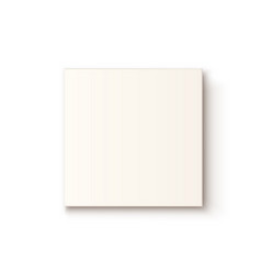 realistic white box icon isolated on white vector image