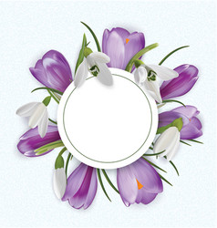 round template with bouquet of crocuses and vector image