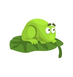 Shy Green Frog Funny Character Sitting On The Leaf vector