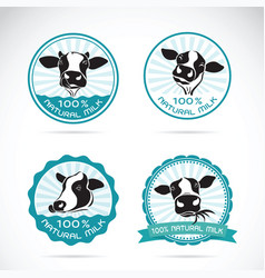 set of a dairy cows label on white background vector image