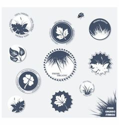 labels organic vector image