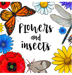 square banner - insects and flowers with round vector image