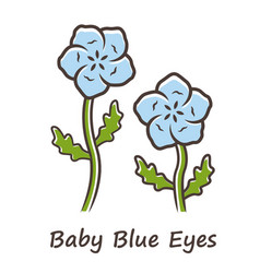 Baby blue eyes color icon linen blooming flower vector