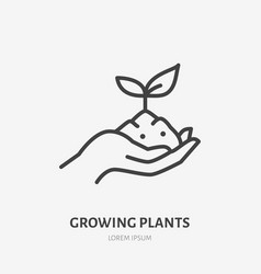 hand holding soil with plant flat line icon vector image