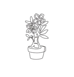 one single line drawing fresh beauty potted vector image