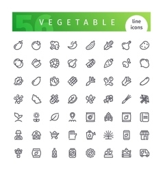 Vegetable Line Icons Set vector