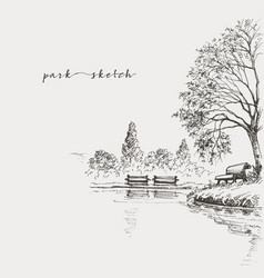 artistic park sketch bench and lake vector image vector image