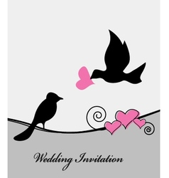 wedding card with bird vector image