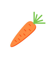 flat design carrot isolated on white background vector image vector image