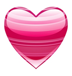 Beautiful heart vector image