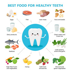 best food for healthy teeth and cute tooth cartoon vector image