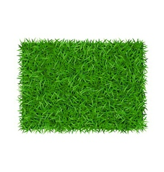 Green grass background rectangle vector