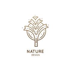 Tropical plant logo vector