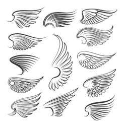 wings isolated on white background Cartoon tattoo vector image
