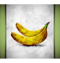 Banana watercolor vector image vector image