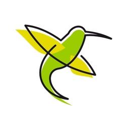 Graceful green hummingbird vector image vector image