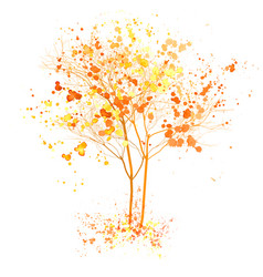 Autumn tree watercolor fall tree vector