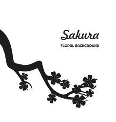 black silhouette sakura on a white background vector image